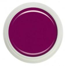 Гель-краска Fantasy Nails №015 raspberry wine